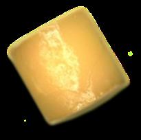 Hydrated OTX-CSI insert (image)